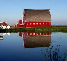 Lone Star Farms... by Larry Trupp