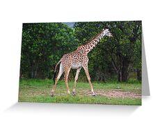 Giraffe - Masai Mara - Kenya Greeting Card