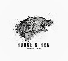 iPhone Case House Stark Winter is Coming by Teddy Got His Gun