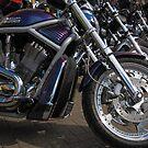 Harley by StephenRB