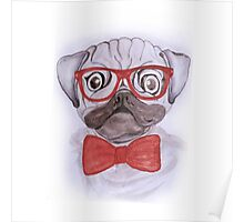 Cute funny watercolor pug with red glasses and bow hand paint Poster