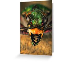Tiger beetle close-up Greeting Card