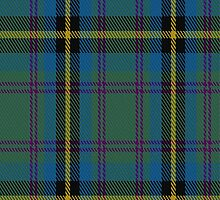 01927 Carrick Hunting Tartan Fabric Print Iphone Case by Detnecs2013
