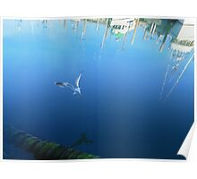 Fishing Boat Refections  Poster