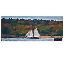 Sailing the Shoreline Photographic Print