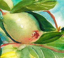 Pear ll by Sally Griffin