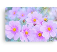 pretty little flowers.. Canvas Print