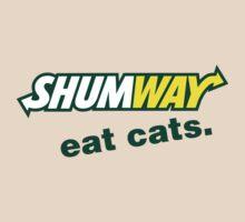 Shumway Logo by Brinkerhoff