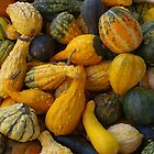 Squash & Gourds by Tom  Reynen