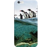 Penguins Running Into Water iPhone Case/Skin