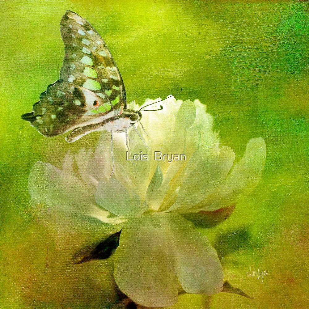 Malachite on Peony by Lois  Bryan