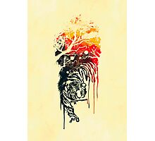 Painted watercolor tiger Photographic Print