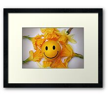 Daffodil's and the smiling ball Framed Print