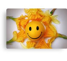 Daffodil's and the smiling ball Canvas Print