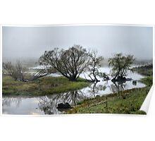 Murray River Lagoons - Walwa Victoria Poster