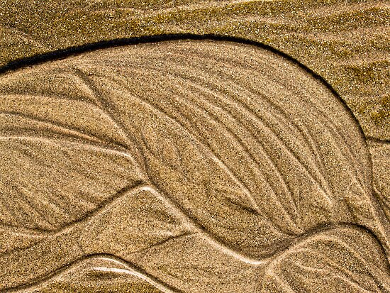 Tide-sculpted sand by Celeste Mookherjee