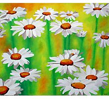 White Daisies On A Yellow And Green Summery Background Photographic Print