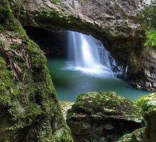 Springbrook national park cave by Cat M
