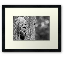 Black & White Stone Statue Framed Print