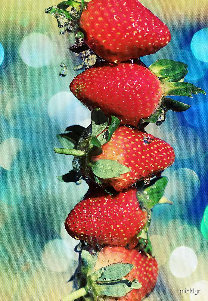 Berry Bokeh by micklyn