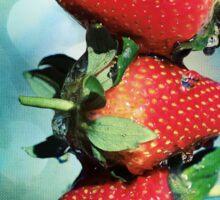 Berry Bokeh Sticker