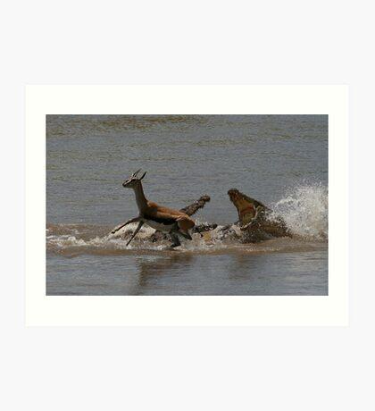 Crocodile hunt, Masai Mara Art Print