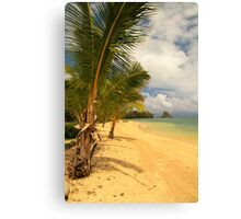 Secret Beach - Oahu Canvas Print
