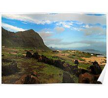 Oahu Poster