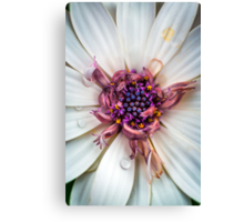 Waking up with a big smile and huge bedhead Canvas Print