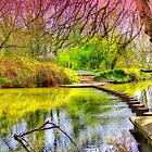 The Stepping Stones - Box Hill - Orton  by Colin J Williams Photography