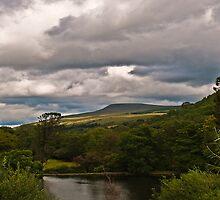 Craig-y-Nos Country Park by Tony Batey