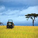 Masai Mara Game Drive  - Kenya by Charuhas  Images