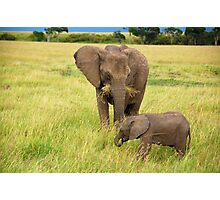 Baby Elephant with Mother - Masai Mara - Kenya Photographic Print