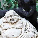 Buddha Smiles For Suki by Heather Friedman