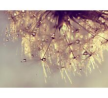 sparkles of gold Photographic Print