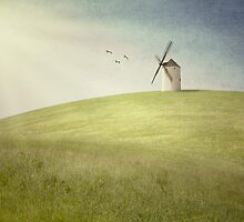 Windmill by MickP