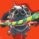 Good Doggie! Dalmatian with a chew toy by Nancy Daleo