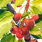 Cherries by Sally Griffin