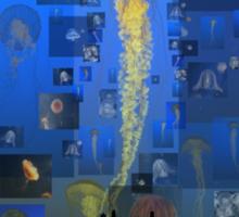 Our Jellyfish Sky Sticker