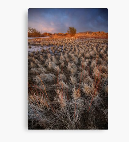 Sunset March Canvas Print