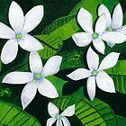 White Wildflowers by Barbara  Strand