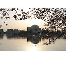 Jefferson Memorial & Cherry Blossoms Photographic Print