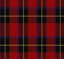 01959 Cetoloni Tartan Fabric Print Iphone Case by Detnecs2013
