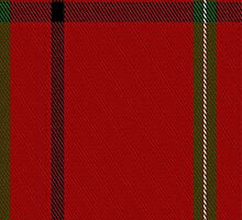 01961 Chalet Fashion Tartan Fabric Print Iphone Case by Detnecs2013