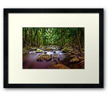 Curtis Falls Mount Tambourine Gold Coast HDR Framed Print