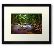 Curtis Falls Mount Tambourine Gold Coast HDR Framed Print