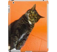 You Lookin' @ Me? iPad Case/Skin