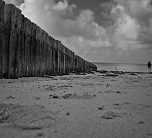 The Foreshore by GandK