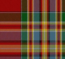 01968 Chattan Clan/Family Tartan Fabric Print Iphone Case by Detnecs2013