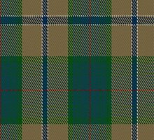 01981 Chisholm Colonial Clan/Family Tartan Fabric Print Iphone Case by Detnecs2013